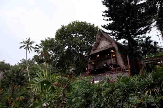 Villa above the Birds' Nest