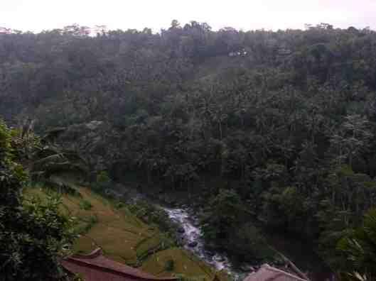 View of stream below