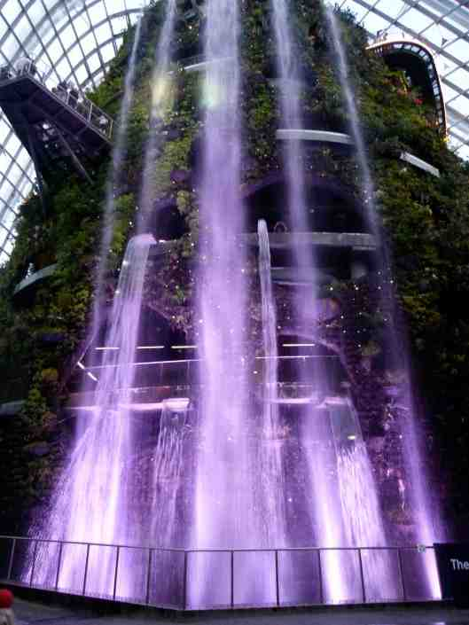 Entrance of the Cloud Forest